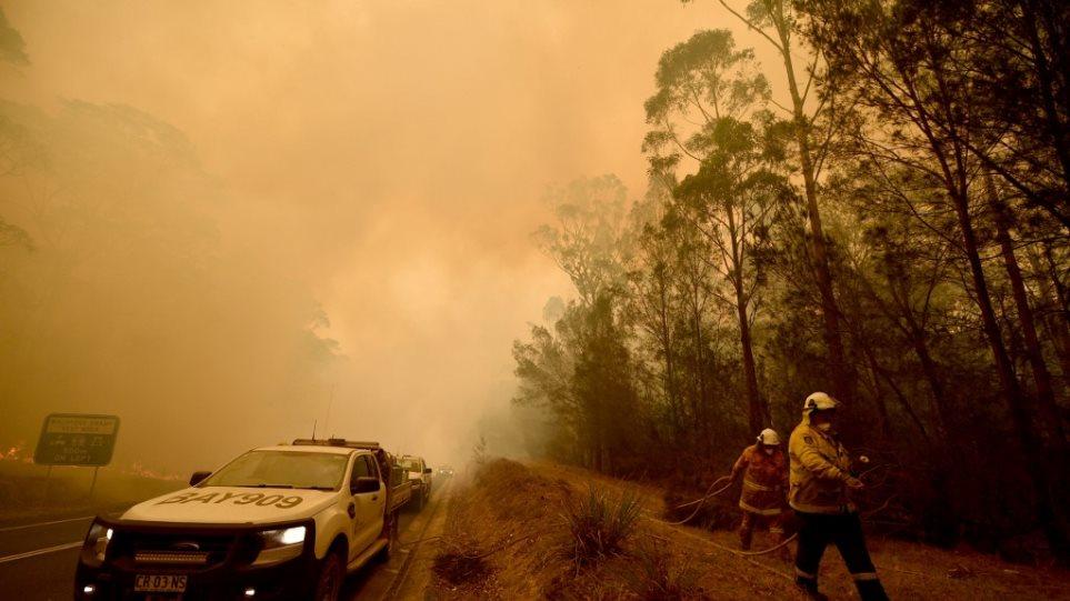 Φωτιά - Αυστραλία: Πάνω από 500 εκατ. τα νεκρά ζώα - Σε εξέλιξη έρανος